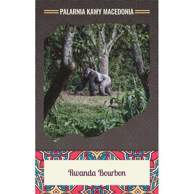 Rwanda Bourbon Kawa naturalna